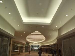 Port-Elizabeth-ceilings-12